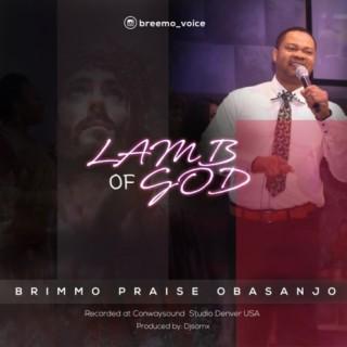 Lamb Of God - Boomplay