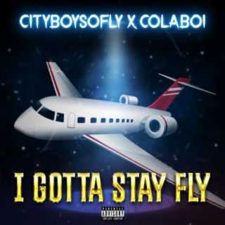 I Gotta Stay Fly - Boomplay