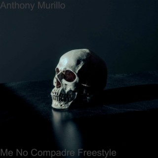 Me No Compadre (Freestyle) - Boomplay
