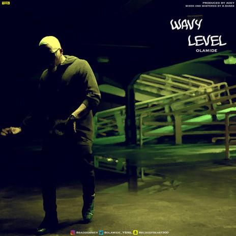 Wavy Level