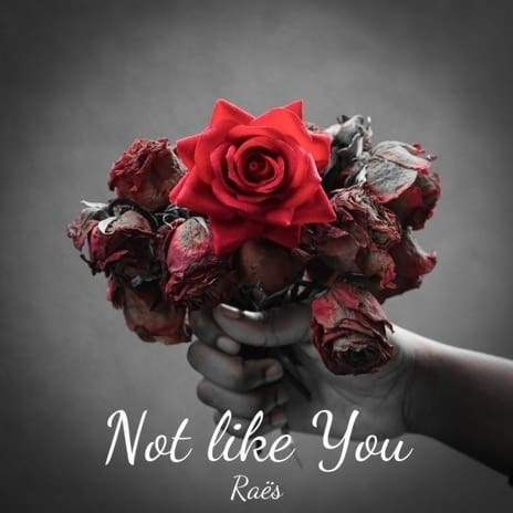 Not Like You - Listen on Boomplay For Free