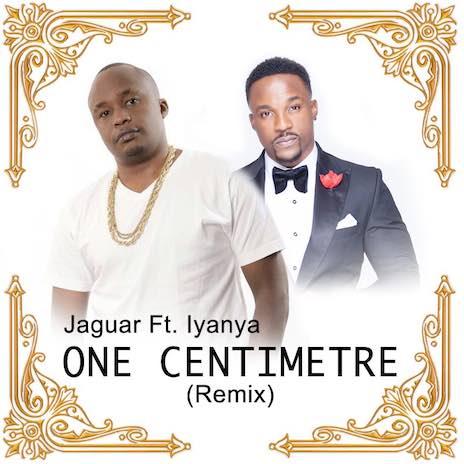 One Centimeter (Remix) ft. Iyanya